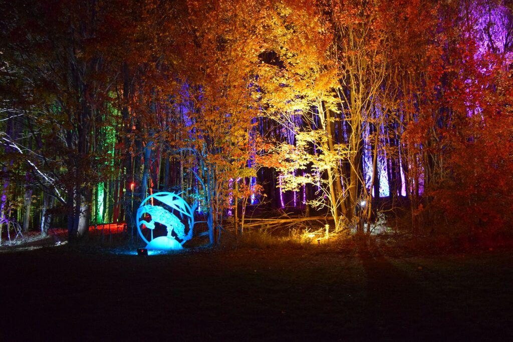sculpture park illuminated in colorful lighting